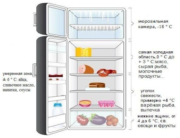 Температурные зоны однокамерного холодильника