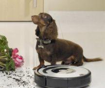 Пылесос для уборки шерсти животных