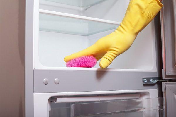 Холодильник внутри