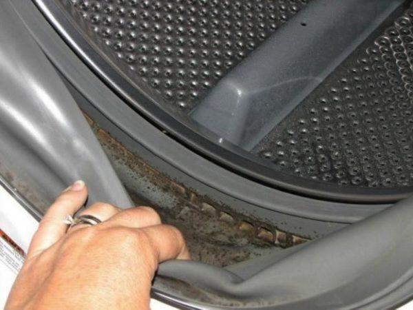 Резиновая манжета стиральной машины
