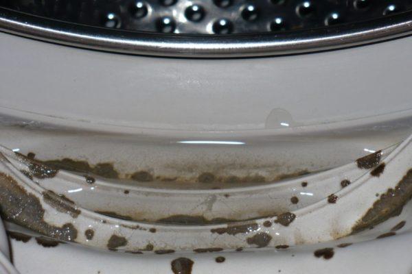 Плесень на резиновом уплотнителе двери стиральной машины