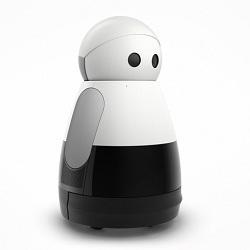 Робот-домохозяйка kuri