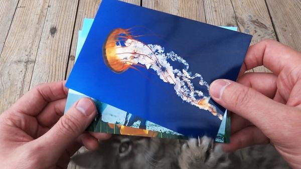 Фотобумага для струйного принтера