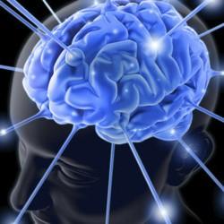 Подключение мозга к всемирной сети