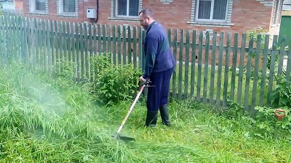 Покос высокой травы