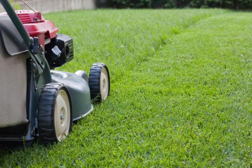 Направление стрижки травы
