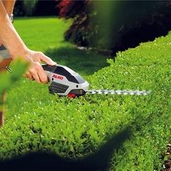 Какие бывают садовые ножницы