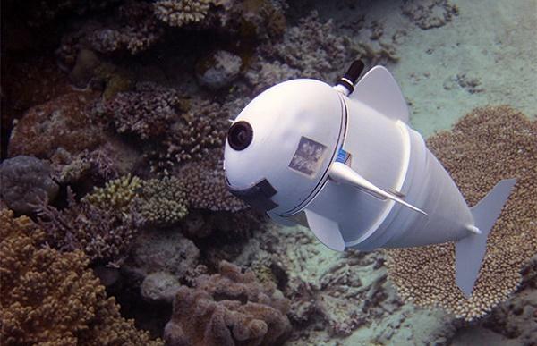Робот в океане