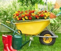 Техника дл садовода