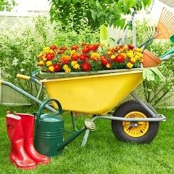 5 видов техники, которые обязательно должны быть у садовода