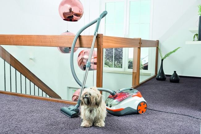 Thomas DryBOX+AquaBOX Cat & Dog и собака