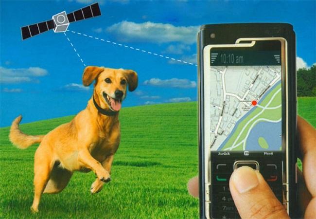 Связь навигатора со смартфоном
