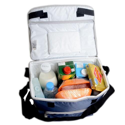 Арктика Сумка-холодильник 3000