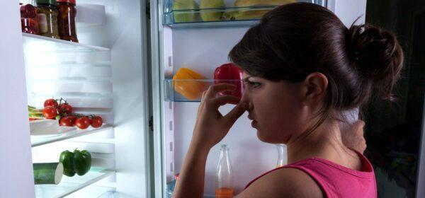 Плохой запах из холодильника
