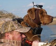 Камера для охоты и рыбалки