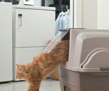 Биотуалет для животных