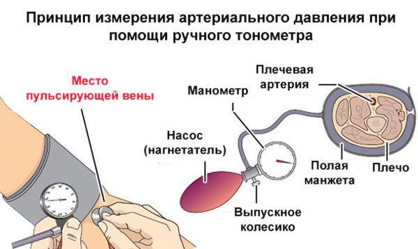 Принцип измерения тонометром