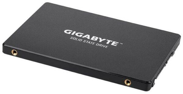 GIGABYTE 256 GB SSD 256GB (GP-GSTFS31256GTND)